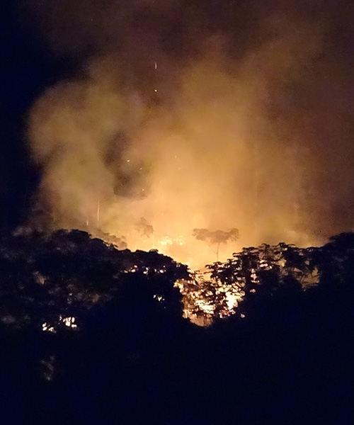 The Amazon fires—and their fallout all the way in São Paulo